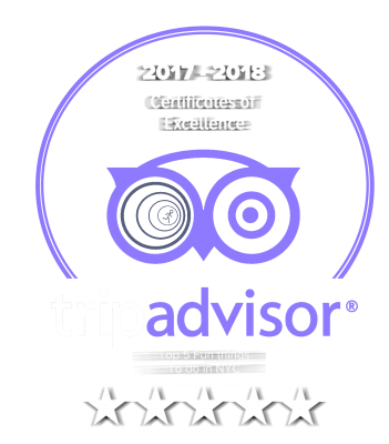 Trip advisor review banner shows five star rating, top five fun and games in NYC and certificate of excellence in 2017-2018